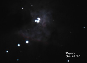 The Orion Nebusa